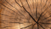 De madera compra baules de madera